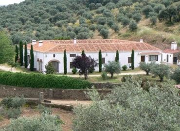 Casa Rural Lagar el Altozano